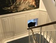 Tæppet er formet efter trappens forløb